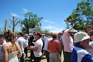 The betting ring at the 2008 Berrigan Cup meet...